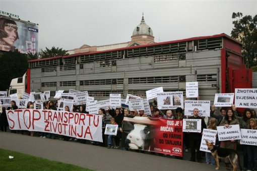 Protest against live animal transport 4 [ 105.26 Kb ]